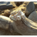 Skelligs Stacking Rings (set of 4)